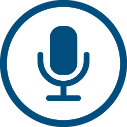 AudioEye Accessibility Statement icons voice